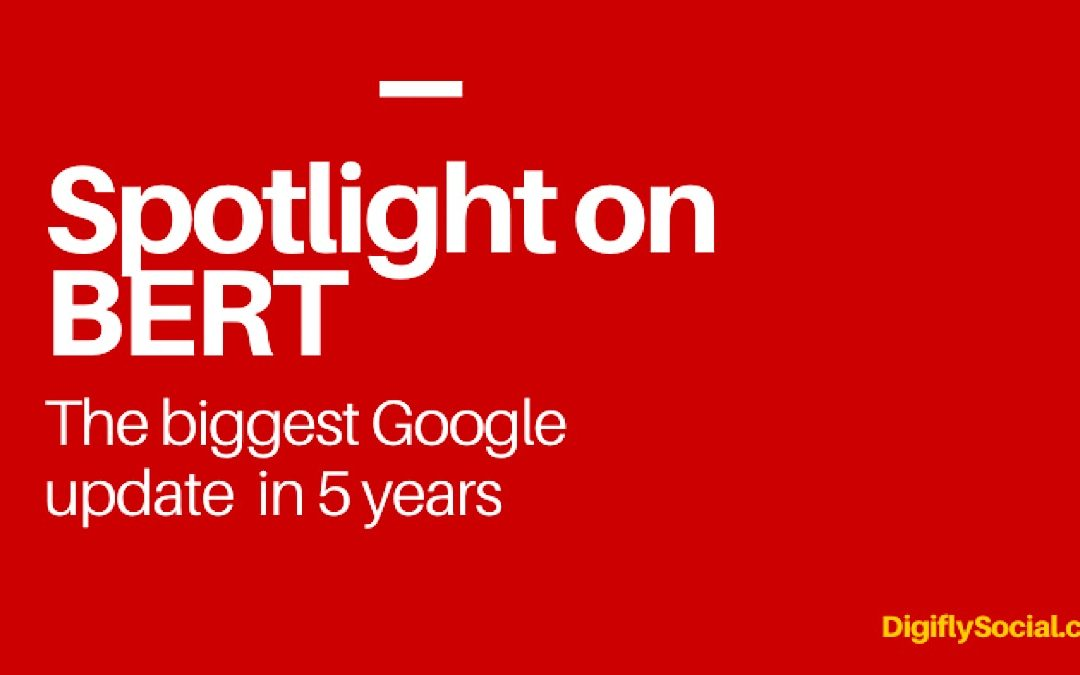 Spotlight on BERT – The Biggest Google Update in 5 Years